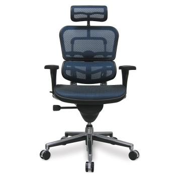Ergohuman ME7ERG-W09-01W09-01 Black Mesh Hi Swivel chair