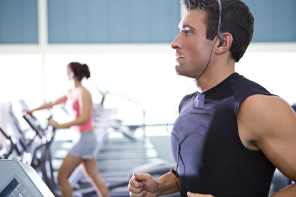 Ellipticals in the Gym